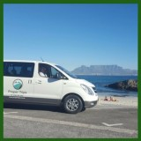 Shuttle Service And Transfers